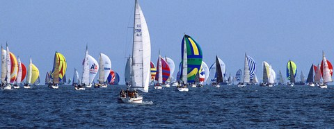 regatta-pic
