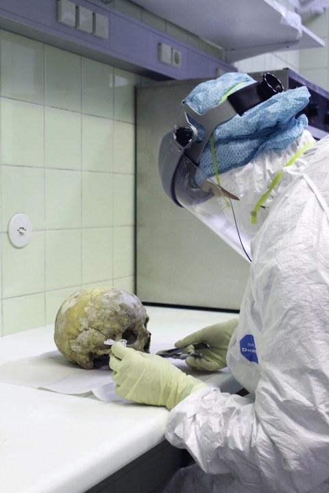 aDNA work in lab