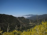 californian-hills