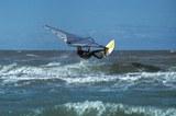 surfer_s